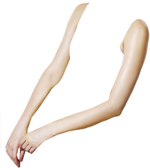 Human arms png. Arm leg body torso