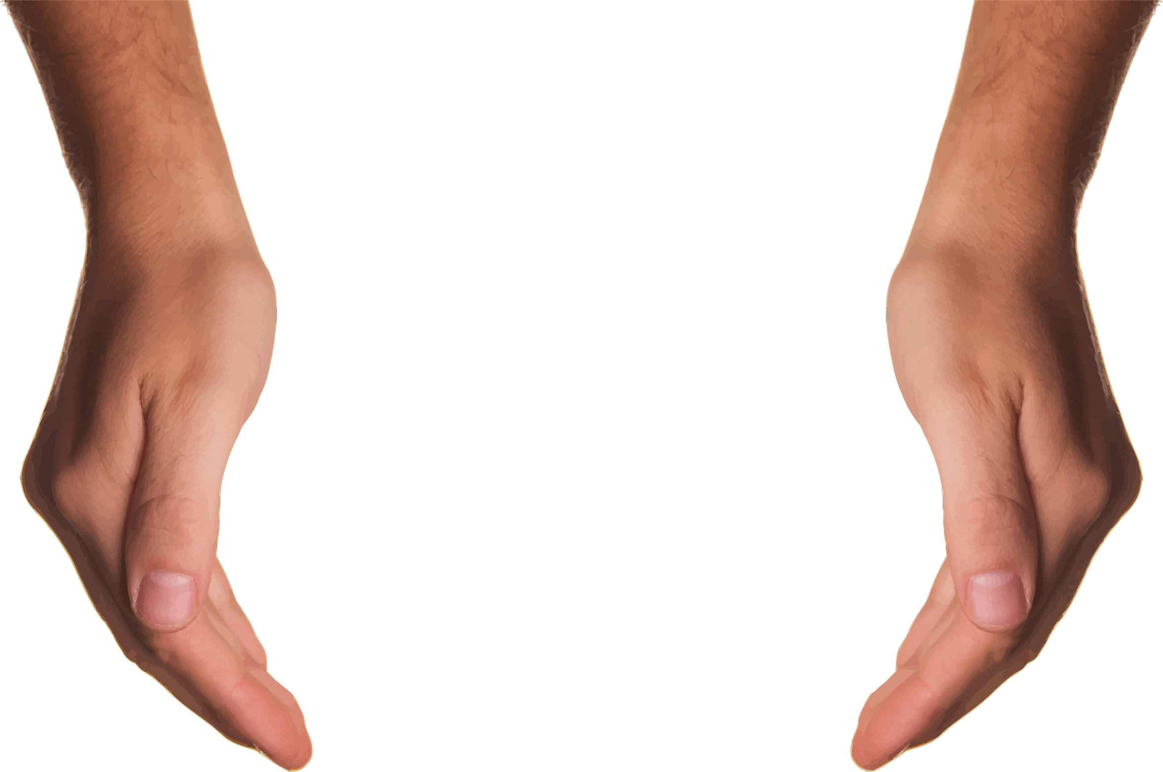 Human arms png. Clipart cupping hands big