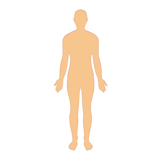 @ vector human. Body man transparent png