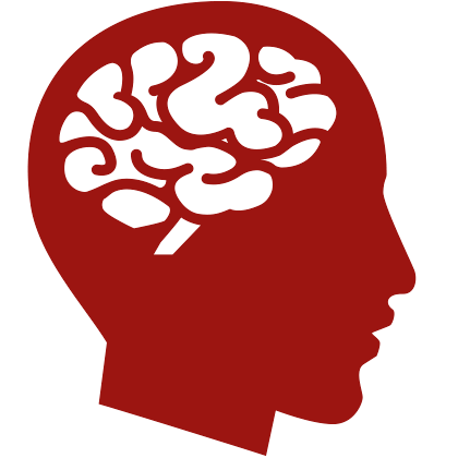 Human brain png. Free icons and backgrounds