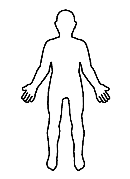 Body silhouette medical at. Photo clipart human banner free