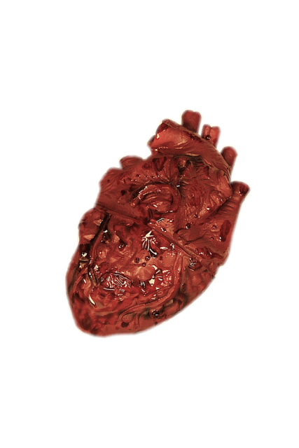 Human heart png. By shadowedxlegacy on deviantart