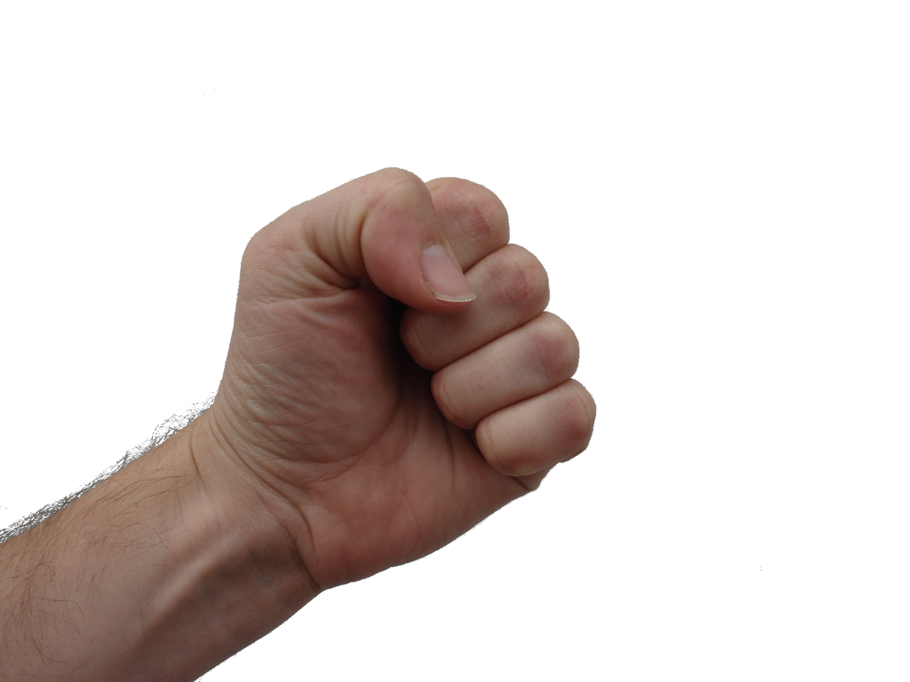 Human thumbs up png. File clenched fist wikimedia
