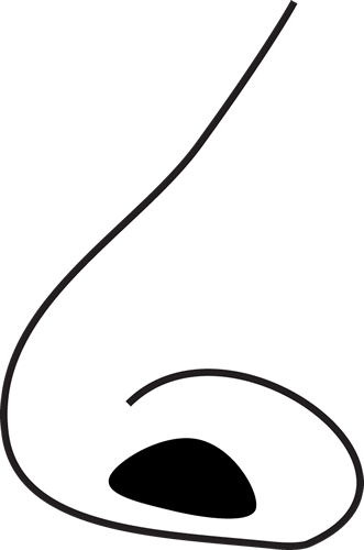 Nose clipart simple nose. Human black and white