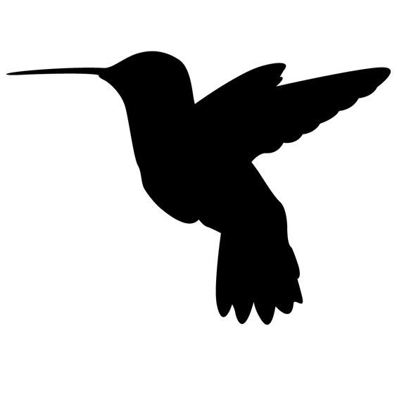 hummingbird clipart decal