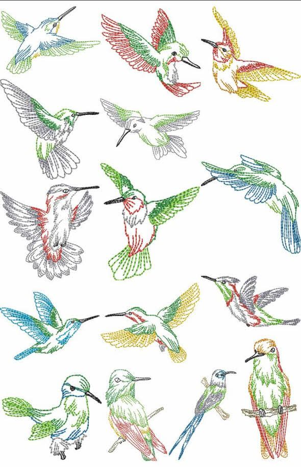 Hummingbird clipart embroidery digitizing. Hand patterns free humming
