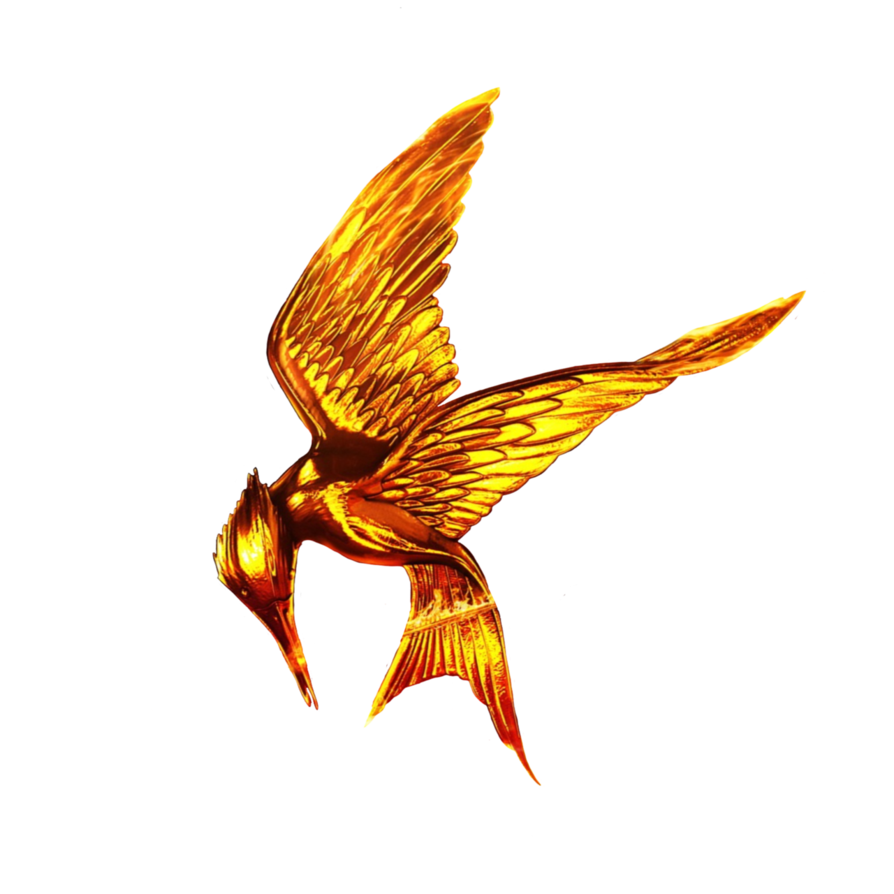 the hunger games png
