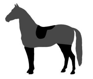 Horse clip different style. Most common types