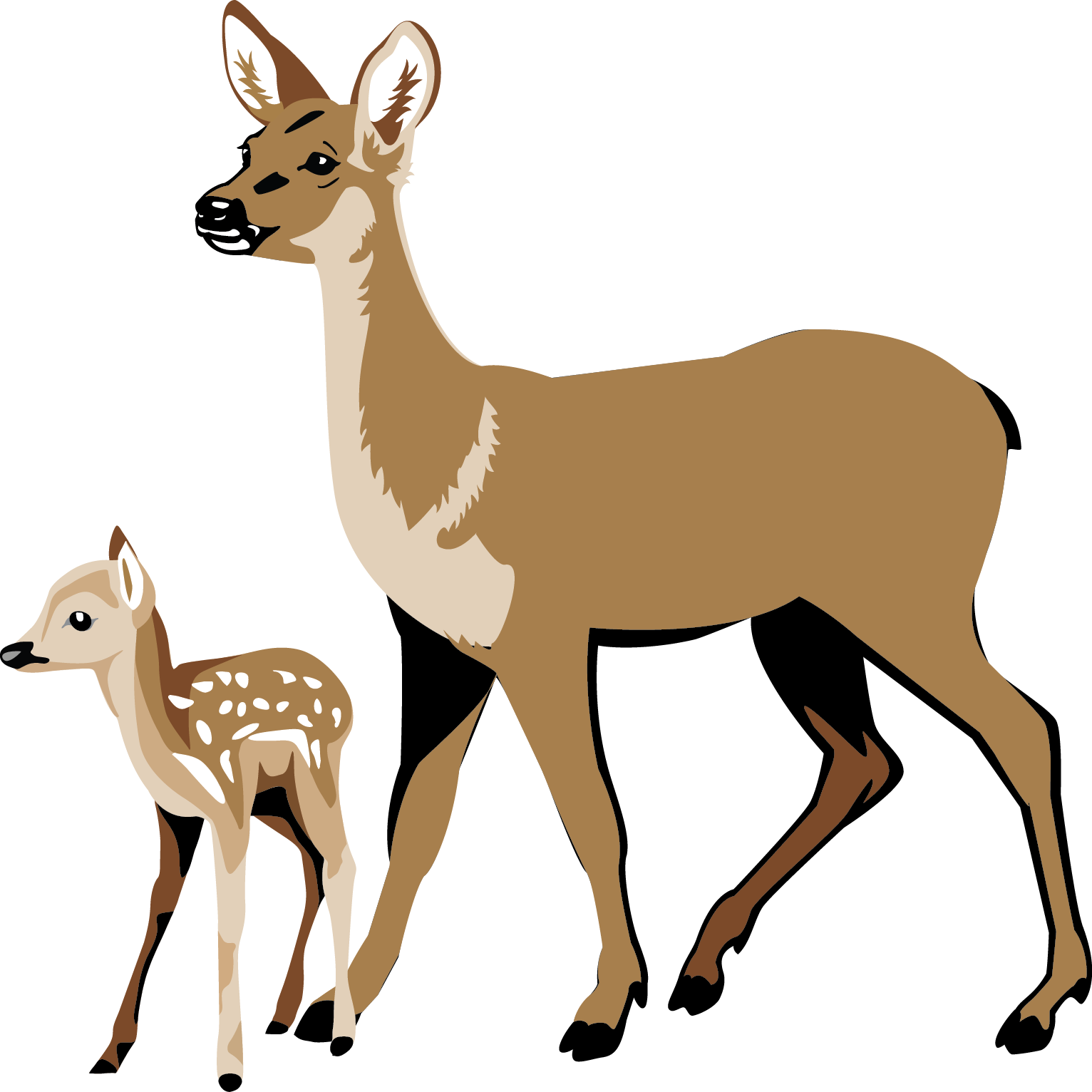 Hunting clipart white tail. Deer at getdrawings com