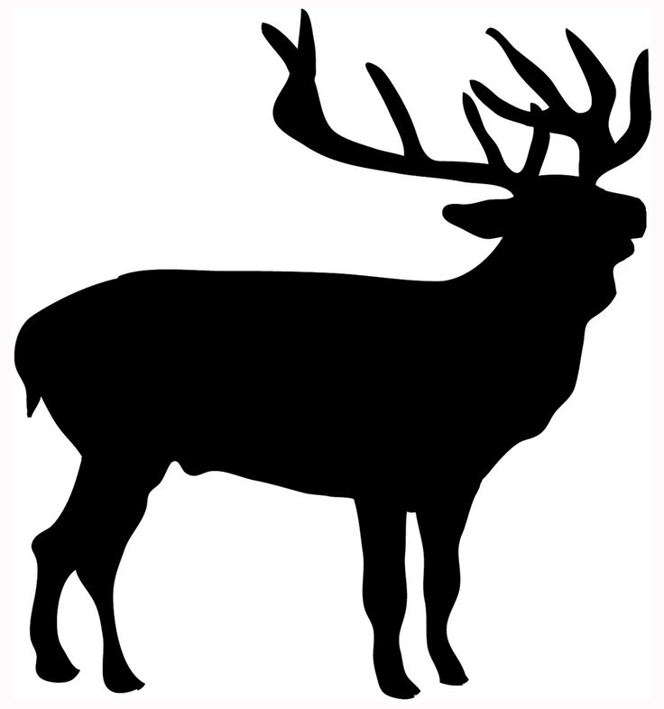 Hunting clipart white tail. Whitetail deer silhouette at