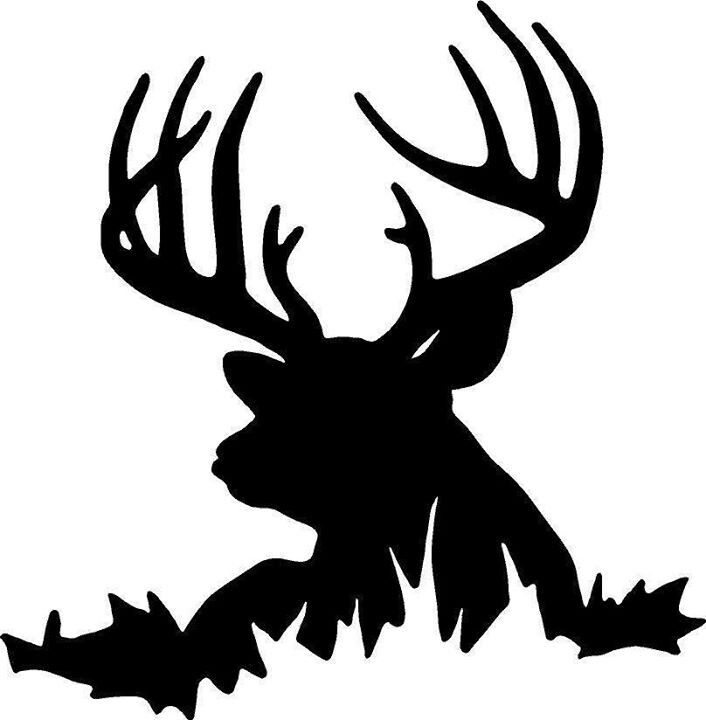 Hunting clipart white tail. Best antler animals
