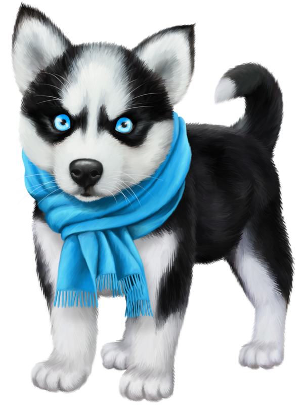 Drawing husky puppy. Chiens dog puppies wallpapers