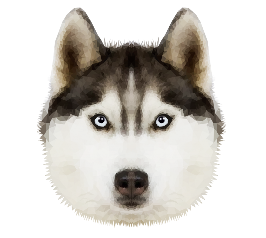 Husky transparent traditional. Png image vector clipart