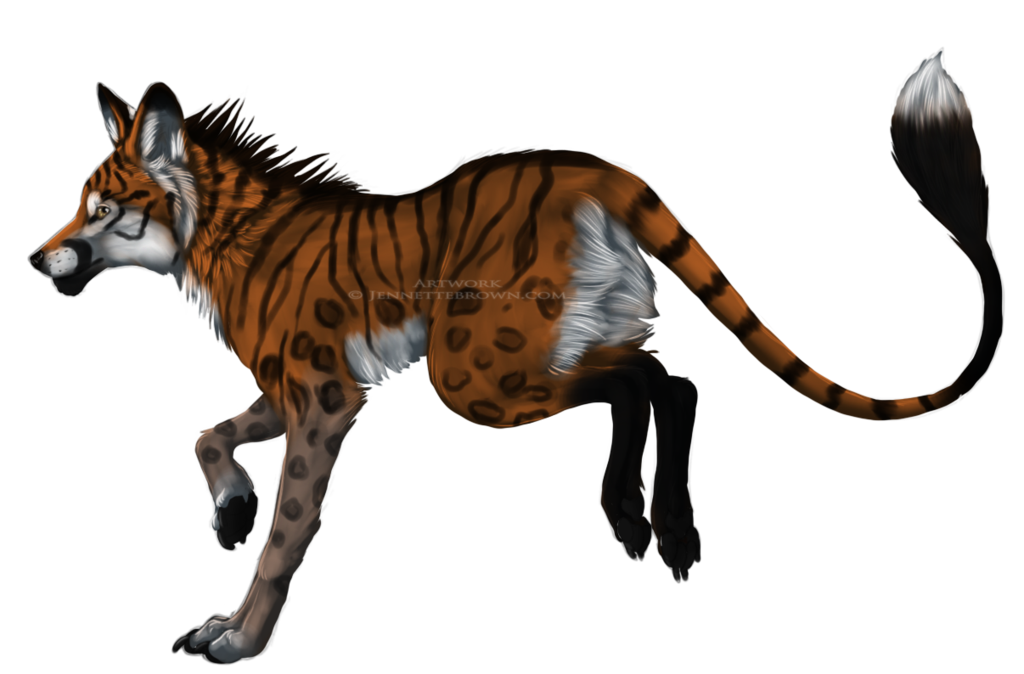Hybrid drawing fox. Hyena tiger by sugarpoultry