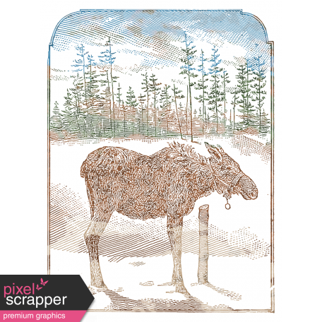 Pocket drawing back. To nature card x