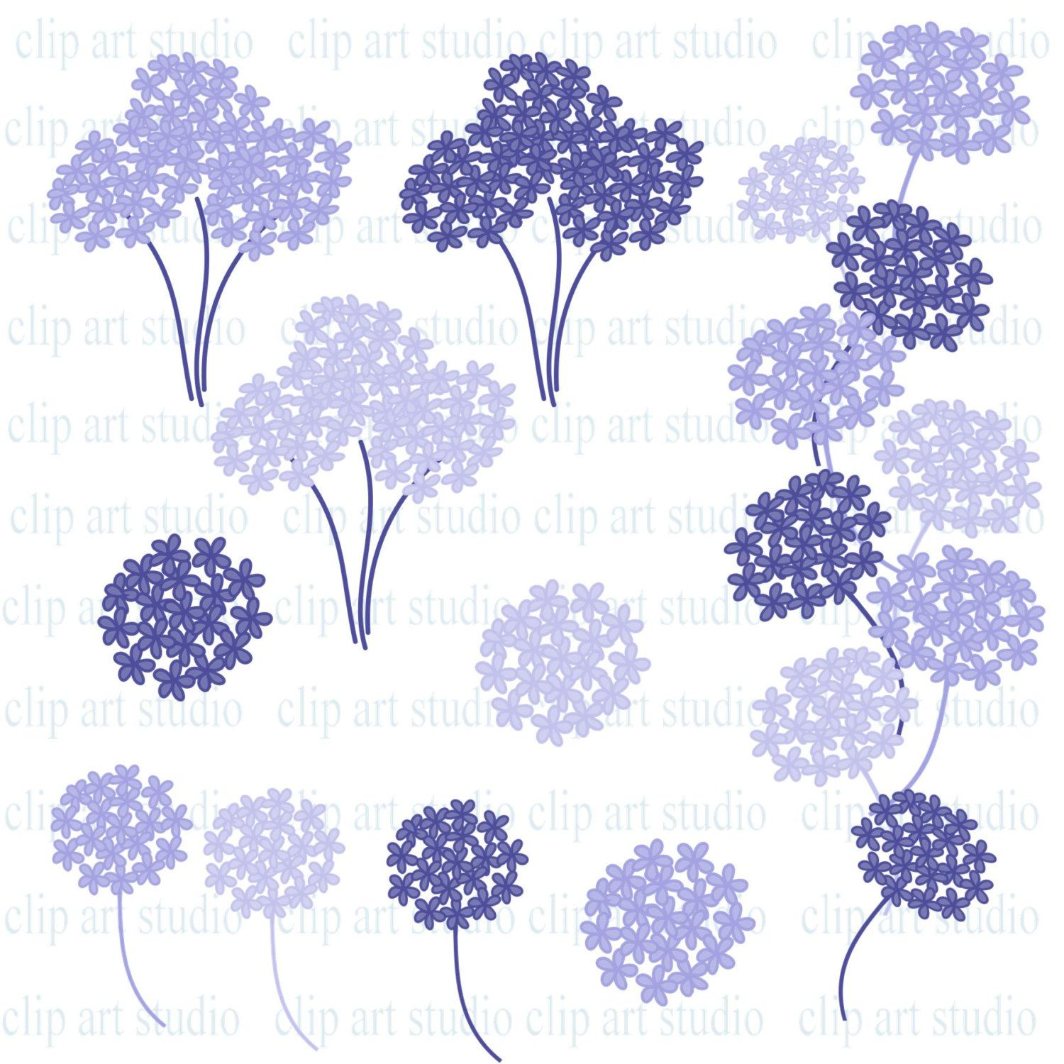 Back gallery for clip. Hydrangea clipart hydrangea flower clipart black and white