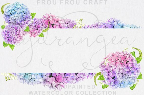 Hydrangea clipart watercolor. Free peony bouquet illustrations