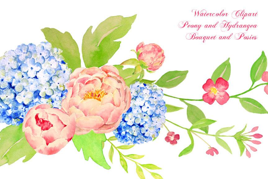 Hydrangea clipart watercolor. Peony and blue bouquet