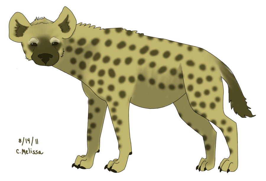 Png images clipart psd. Hyena vector vector library download