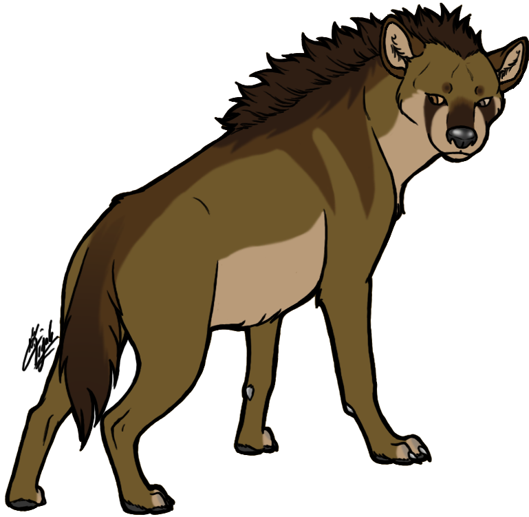 Collection of free hyenas. Hyena vector picture free download
