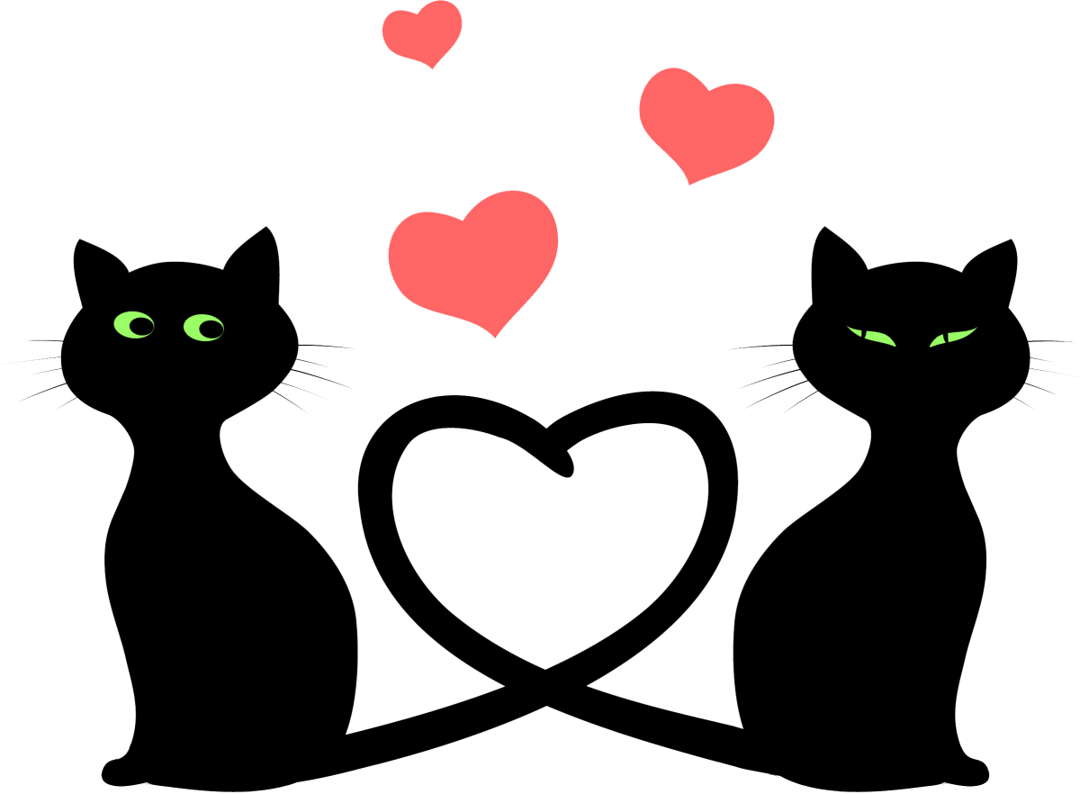 I love cats png