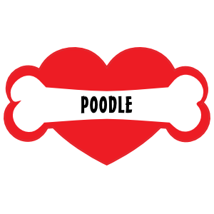 With poodle bone and. I love my dog png picture transparent download