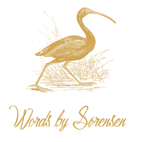 Ibis drawing sacred. The significance of words