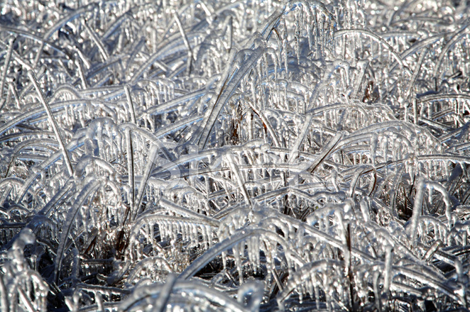 Icicle clipart ice storm. Winter scenes frozen grass
