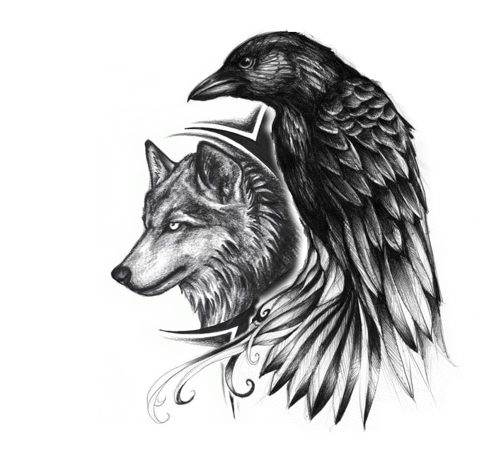 Drawing raven abstract. Crow and wolf tattoo