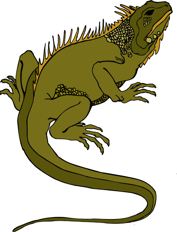 reptile clipart reptile animal