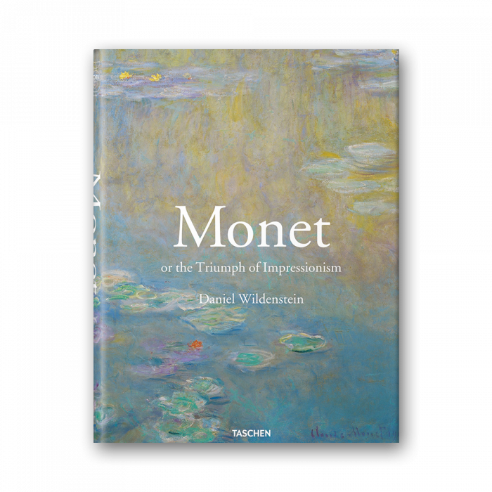 Impressionistic drawing. Monet or the triumph