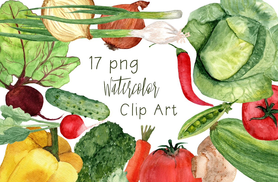 In the clipart vegetable. Watercolor vegetables clip