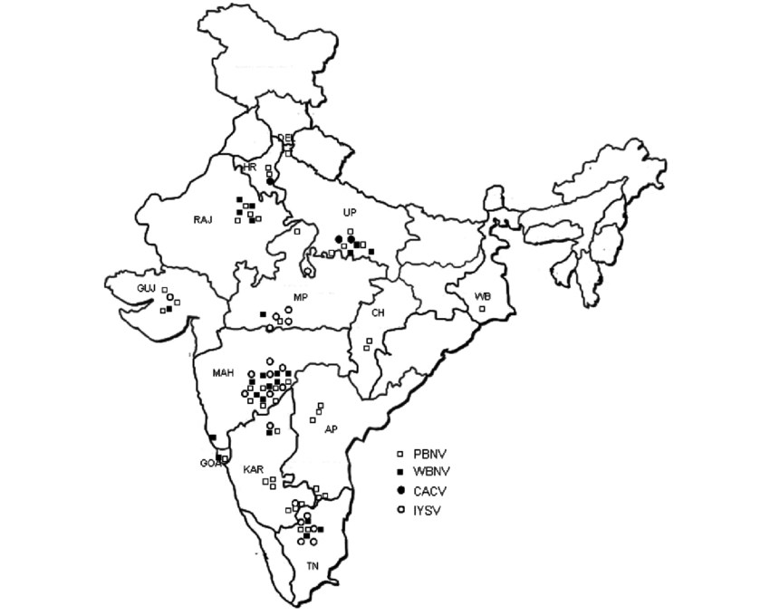Tennessee drawing iris. Geographical map of india