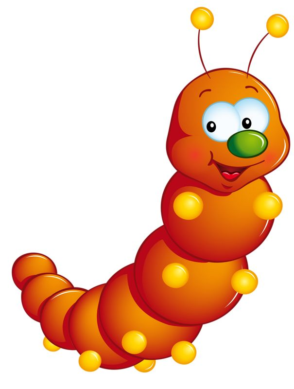 Insect clipart small insect. Best caterpillars and