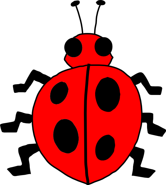 Insect clipart small insect. Ladybug lady bug clip