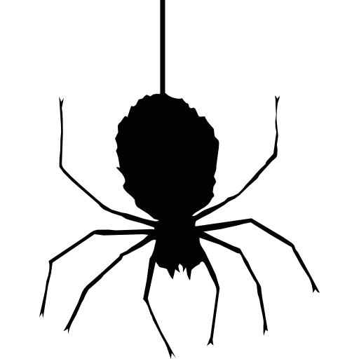 Spider hanging png. Commerce web fear spiders