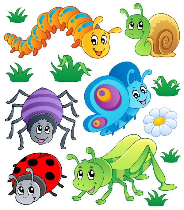 Insects clipart. Best clip art