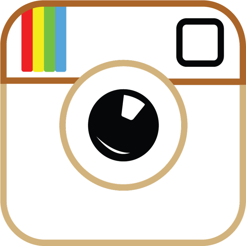 vector instagram transparent background