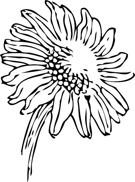 Intricate drawing flower. Ferret colouring in book