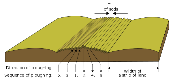 Landforms drawing farm field. Ridge and furrow wikipedia
