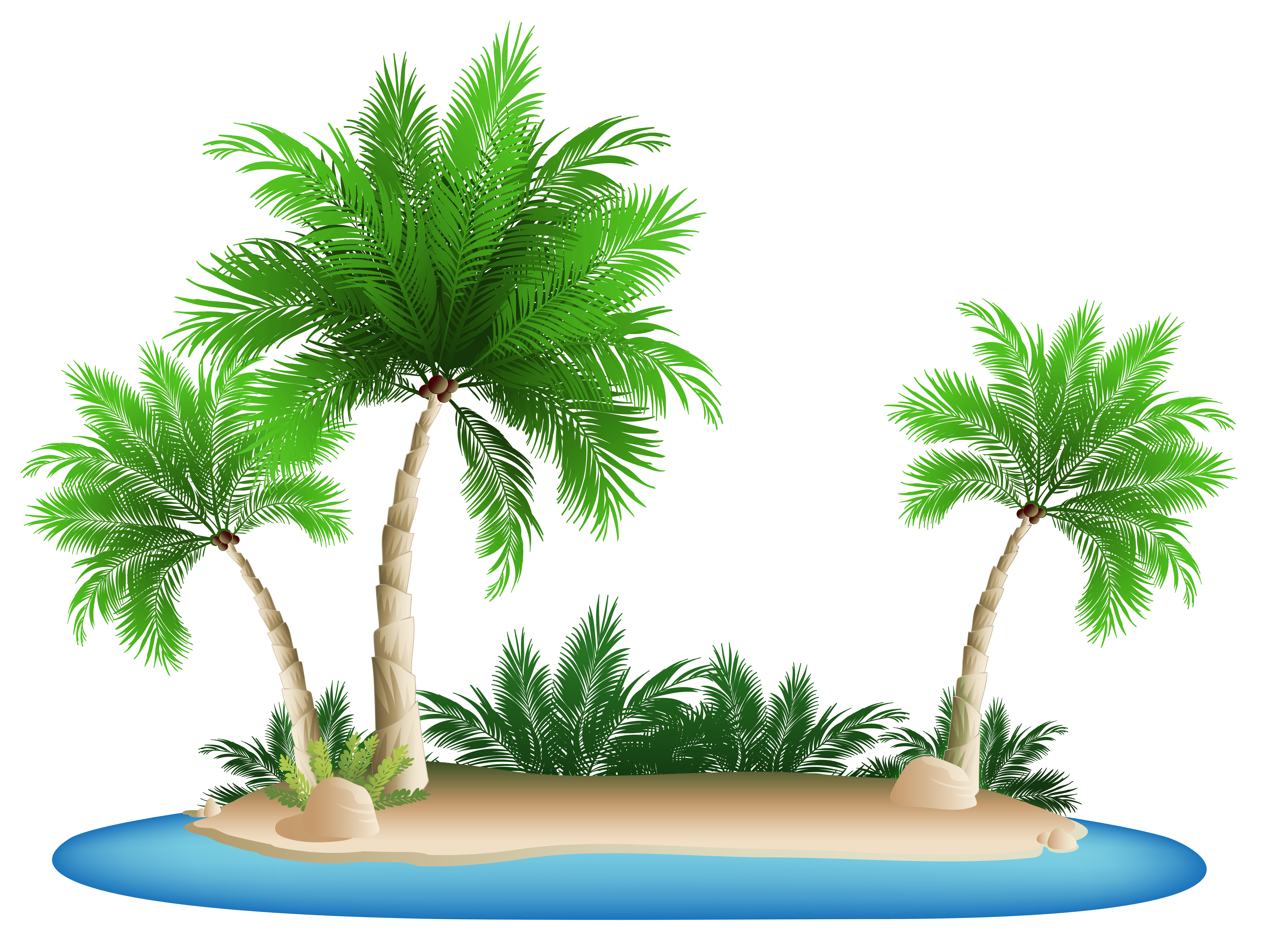 Island png. Palm trees clipart picture