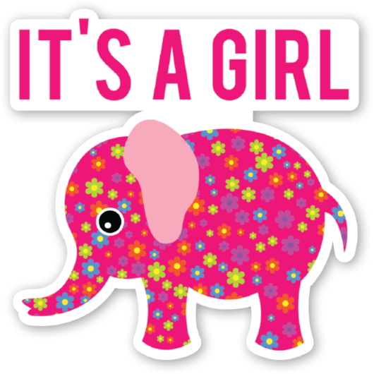 Baby shower girl png. Elephant its a business