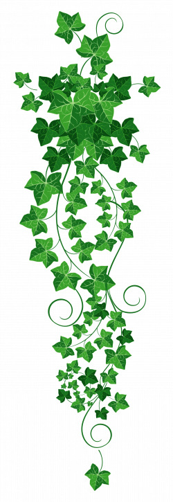 Vines svg green. Pin by billie jean