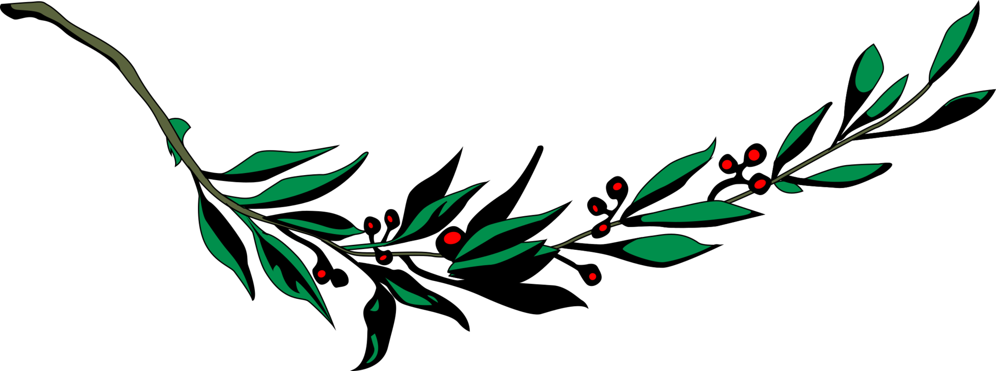 Wreath bay branch computer. Laurel clipart ivy clipart transparent library
