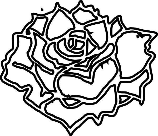 J drawing rose. In bloom clip art