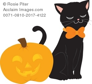15 Jackolantern Clipart Black Cat For Free Download On Ya Webdesign