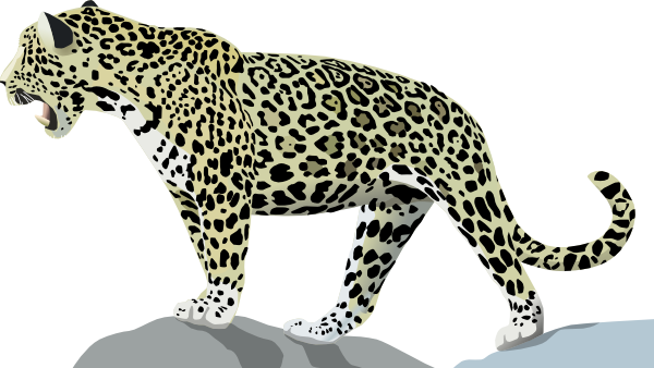 jaguar transparent svg