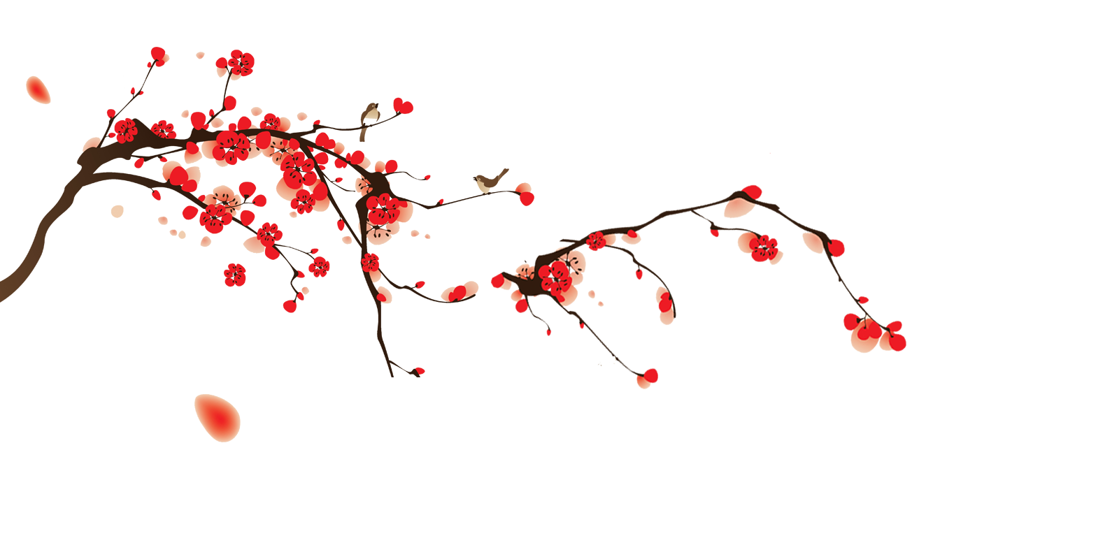 Japanese cherry blossom png. Image tumblr static blossoms