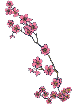 Japanese flower png. Flowers tattoo photos