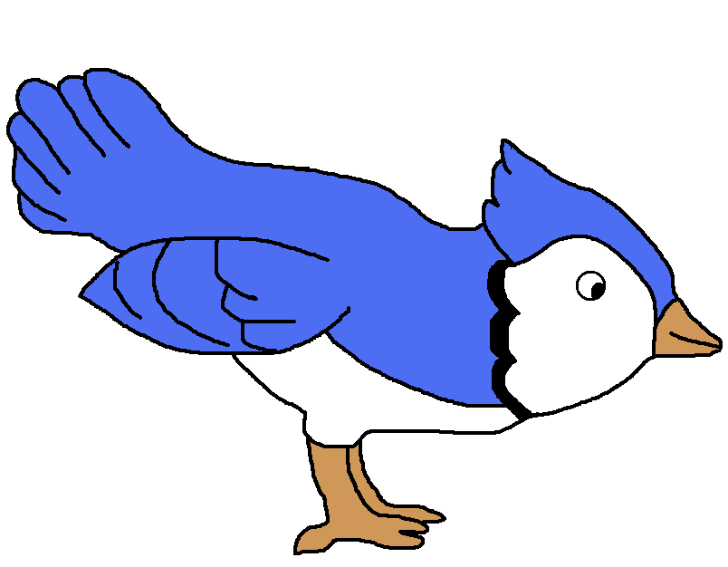 Jay clipart clip art. Pin by donna peterson